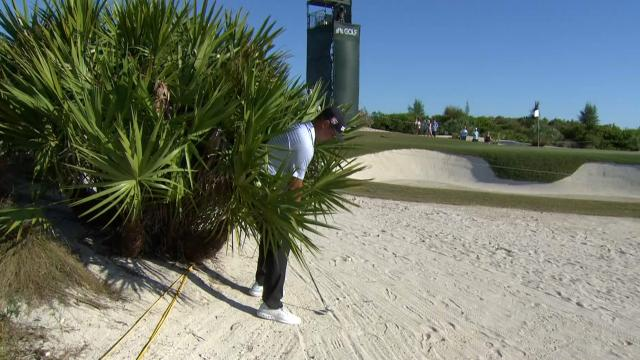 Today's Top Plays: Gary Woodland's shot from the palm tree for the Shot of the Day