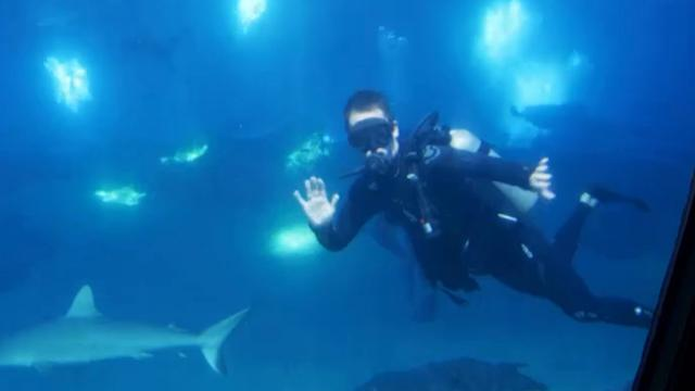 Andrew Putnam goes scuba diving
