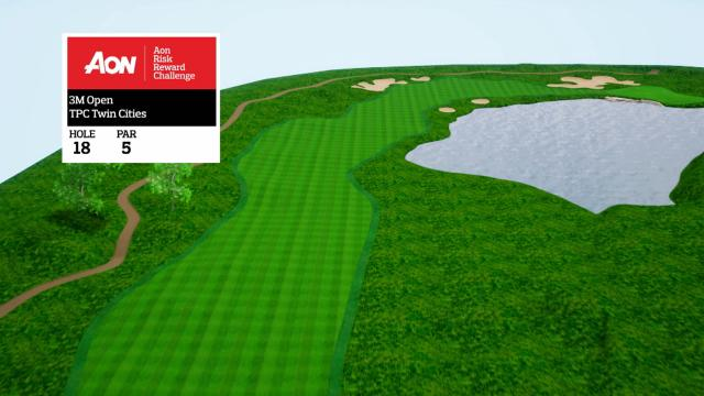 3M Open hole overview at TPC Twin Cities