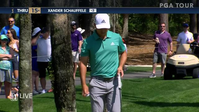 Xander Schauffele uses nice approach to set up birdie at THE PLAYERS