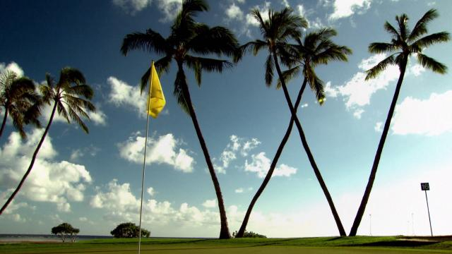 What the 'W' trees at Waialae mean to PGA TOUR players