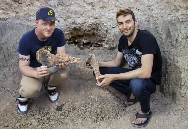 拉斯维加斯评论期刊新闻 房主找到化石